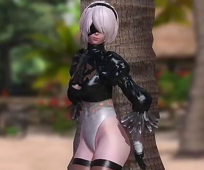 Dead or Alive 5 1.09BH - 2B..